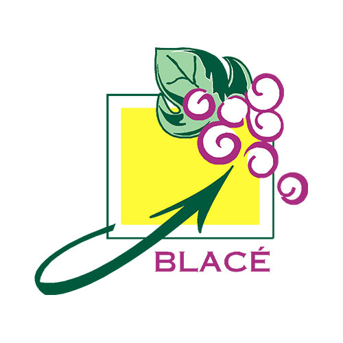 Mairie de Blacé