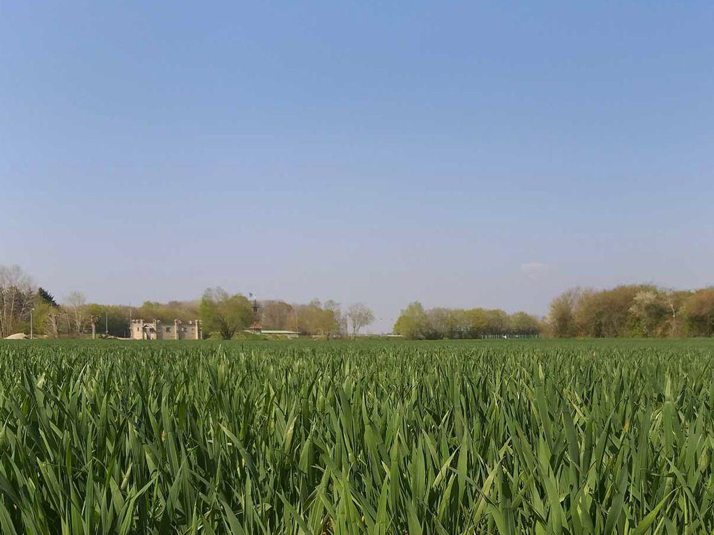 Mairie de Marles-en-Brie (77610)