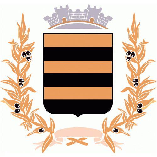Mairie de Bras (83149)